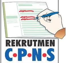 Pendaftaran Ulang CPNS dari Pelamar Umum