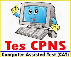 Data Pelamar CPNS Hari ini